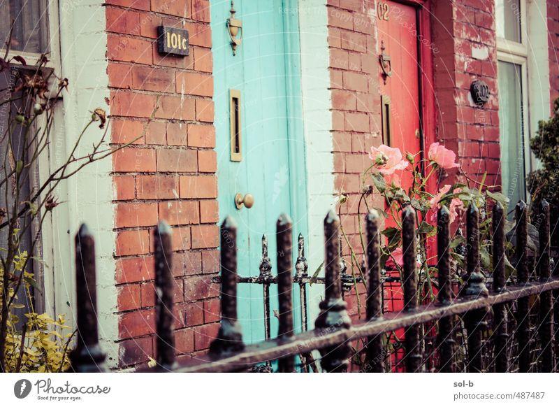 Stadt Blume Haus Fenster Wand Mauer Garten rosa Tür Lifestyle Häusliches Leben einfach einzigartig Rose Vergangenheit Zaun