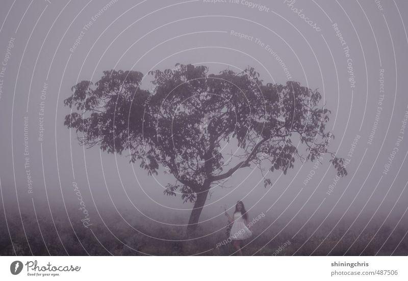 lost feminin Junge Frau Jugendliche 1 Mensch 18-30 Jahre Erwachsene Natur Landschaft Herbst Winter Nebel Baum Feld Wald Kleid schwarzhaarig langhaarig gehen