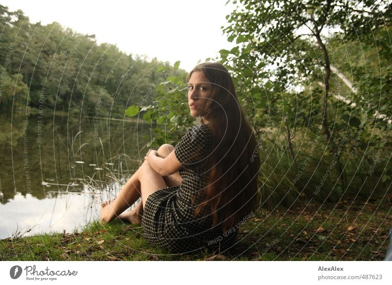 Wächterin Natur Jugendliche schön Baum Junge Frau Wald 18-30 Jahre Erwachsene Erotik natürlich Beine Horizont Idylle sitzen Sträucher Romantik