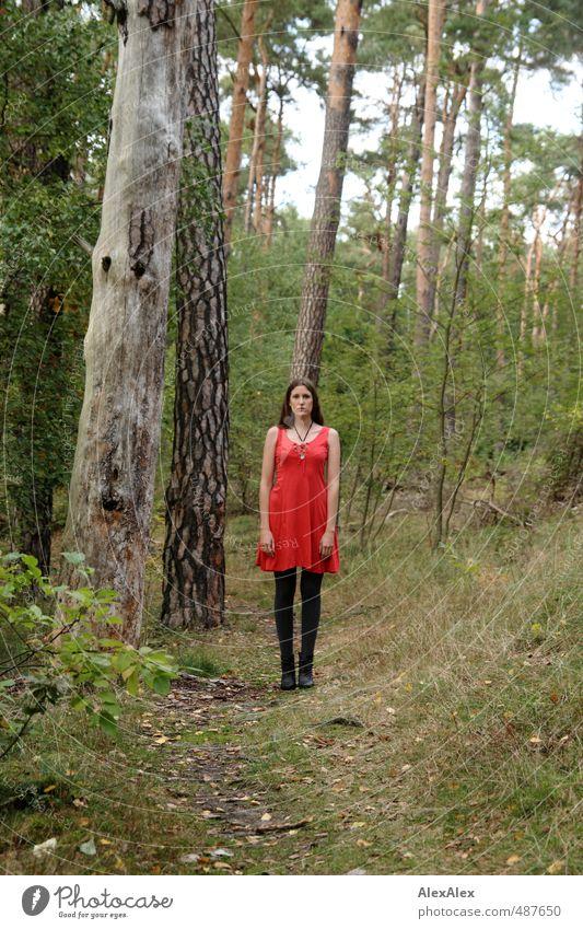 Rotkäppchen oder Rumpelstilzchen? Spielen Ausflug Junge Frau Jugendliche Körper 18-30 Jahre Erwachsene Natur Baum Sträucher Wald Wege & Pfade Fußweg Kleid