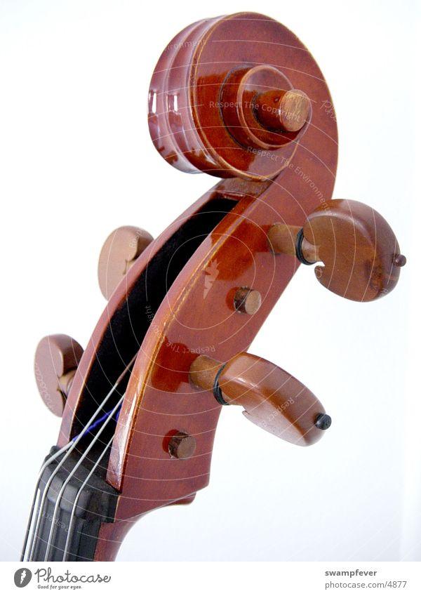 Wirbel Holz Freizeit & Hobby Musikinstrument Saite Streichinstrumente Cello