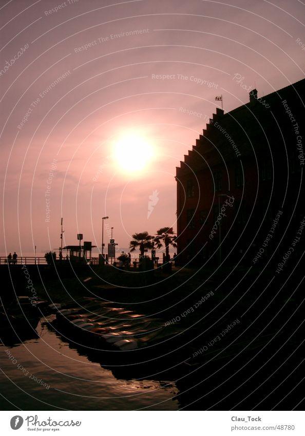 Palmen am Bodensee Sonne Wasserfahrzeug rosa Hafen Meersburg
