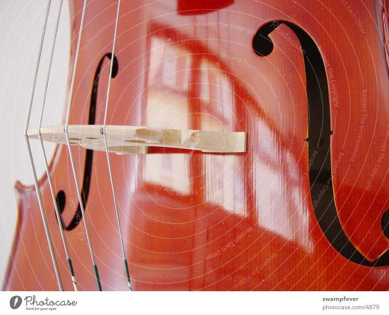 Steg Musik Holz Freizeit & Hobby Stahl Musikinstrument Saite Orchester Musiker Cello