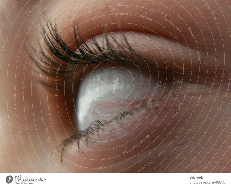 Alien?! rot Gesicht Auge gefährlich Brille drehen Wimpern Gefäße rechts Außerirdischer Pupille Regenbogenhaut Indianer abstrakt Äderchen