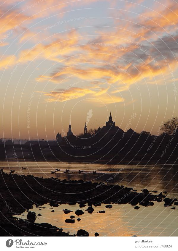 abend an der elbe Himmel Stadt Wolken ruhig Erholung Herbst Landschaft Architektur Gebäude Tourismus Turm Fluss Spaziergang Bauwerk Dresden