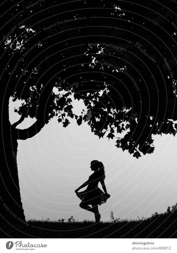 es war einmal.. feminin 1 Mensch 13-18 Jahre Kind Jugendliche 18-30 Jahre Erwachsene Natur Himmel Herbst Baum Gras Park Wald Kleid langhaarig Zopf gehen stehen