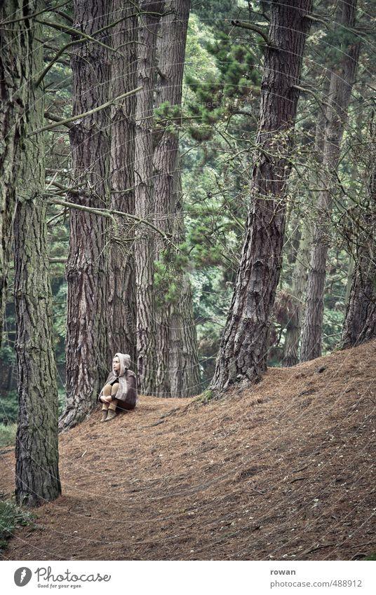 allein Mensch feminin Junge Frau Jugendliche Erwachsene 1 Umwelt Natur Landschaft Baum Wald Denken hocken sitzen träumen Traurigkeit weinen gruselig trist