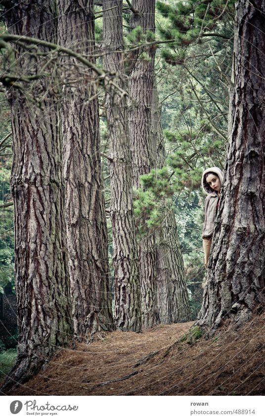 versteckt Mensch feminin Junge Frau Jugendliche Erwachsene Umwelt Landschaft Baum Wald Sicherheit Schutz gefährlich Stress Einsamkeit entdecken unschuldig
