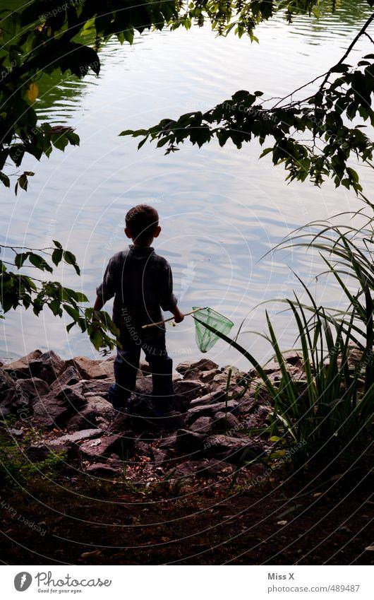 Entdecker Mensch Kind Baum Wald Gefühle Junge Spielen Küste See Stimmung maskulin Freizeit & Hobby Wellen Kindheit Ausflug Abenteuer