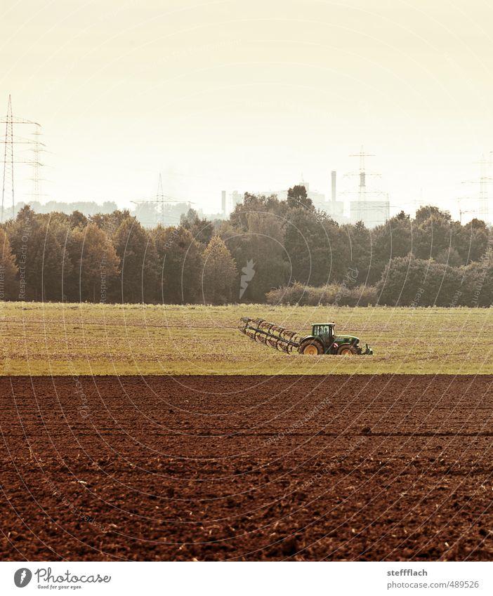 Land Wirtschaft Himmel Landschaft Wald Umwelt Herbst Sand Horizont braun Arbeit & Erwerbstätigkeit Feld dreckig Erde Wachstum Elektrizität Vergänglichkeit
