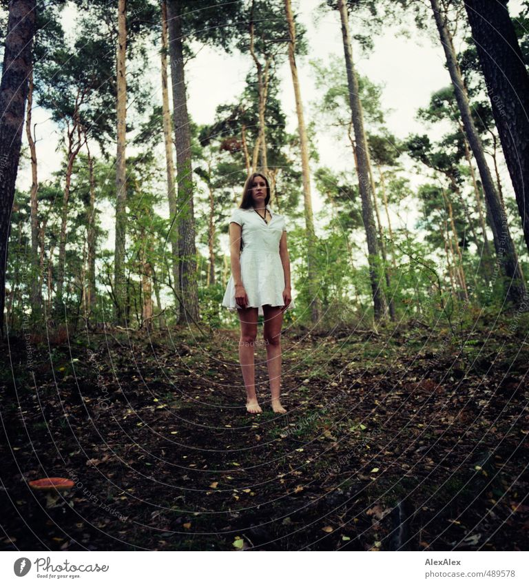 Waldeslust Natur Jugendliche schön weiß Baum Junge Frau Blatt 18-30 Jahre Erwachsene Erotik Gefühle Herbst natürlich Beine träumen
