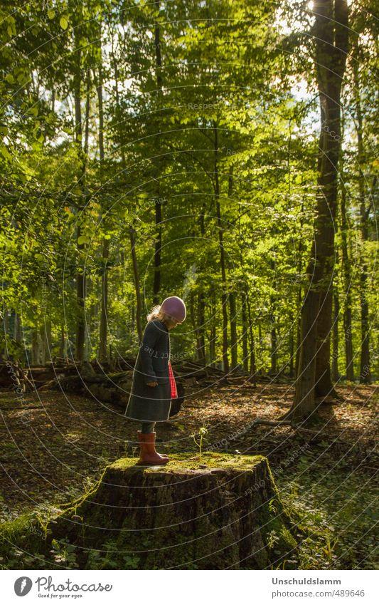Watch me grow Erholung ruhig Meditation Freizeit & Hobby Mädchen Kindheit Leben 1 Mensch 3-8 Jahre Umwelt Natur Landschaft Herbst Schönes Wetter Pflanze Baum