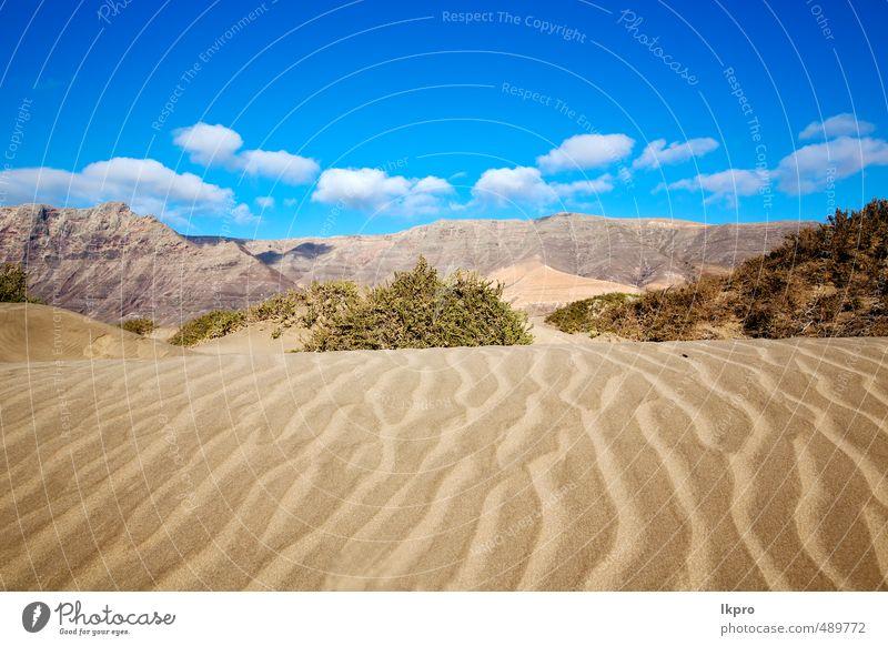 Himmel Natur Ferien & Urlaub & Reisen Pflanze Sommer Erholung Landschaft Wolken Strand Berge u. Gebirge gelb Küste Stein Felsen Sand Tourismus