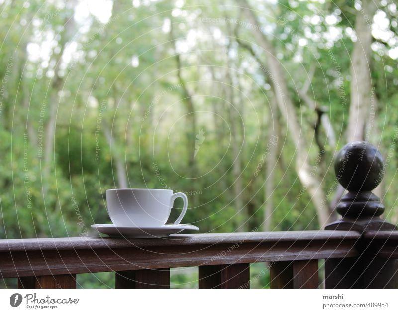 it´s teatime Getränk trinken Heißgetränk Kaffee Tee Gefühle Tasse Urwald Erholung Teetrinken Wald Natur Pause genießen Veranda Farbfoto Außenaufnahme Tag