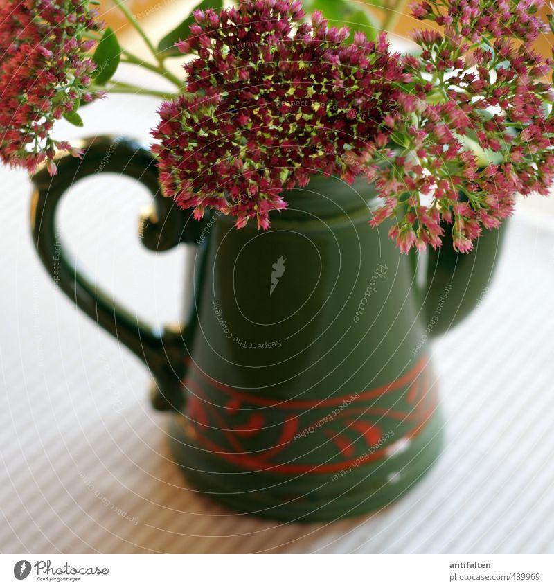 Blumen und Vase schön grün Pflanze rot Herbst Innenarchitektur Linie braun Wohnung Raum Häusliches Leben Dekoration & Verzierung Tisch retro Blühend