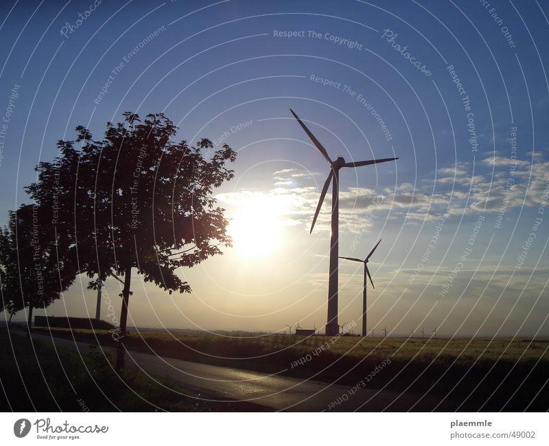 Wind Natur Himmel Baum Sonne Windkraftanlage