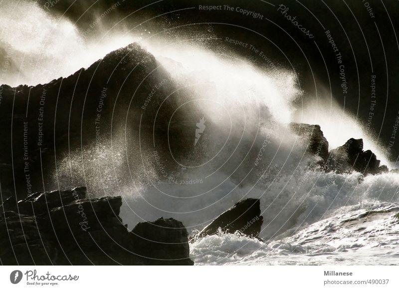Brandung Natur Landschaft Wasser Felsen Wellen Bucht Riff Meer Kraft Farbfoto Außenaufnahme
