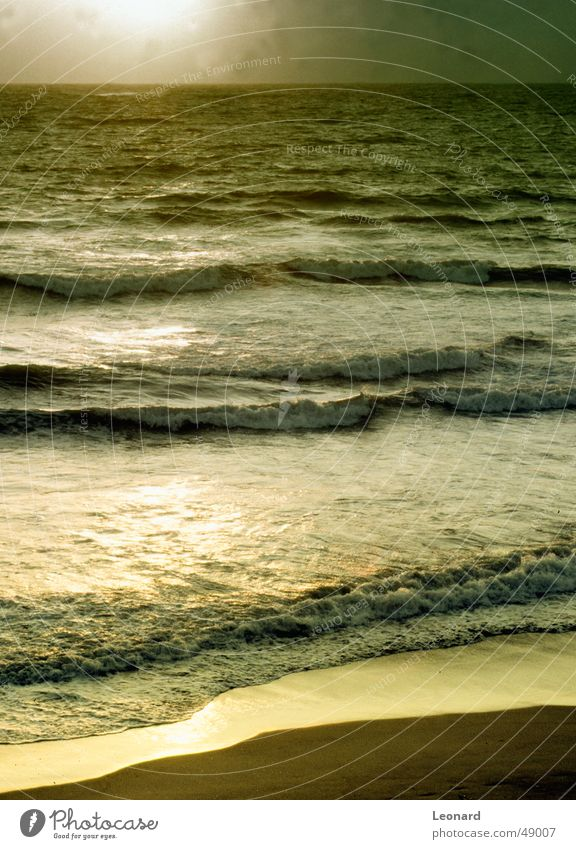 Golden See Meer Sonnenuntergang Glastechnik Strand Atlantik Wellen Portugal Wasser sea gold reflection wave