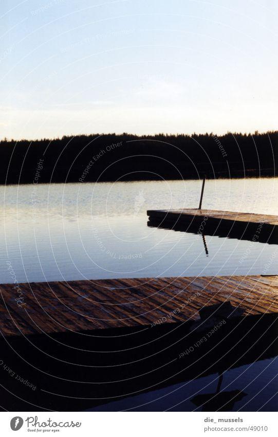wo geht's lang? Steg See Meer Wald Sonnenuntergang Horizont Wasser blau