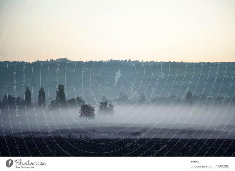 Morgennebel Natur blau Landschaft dunkel kalt Umwelt Herbst Feld Nebel