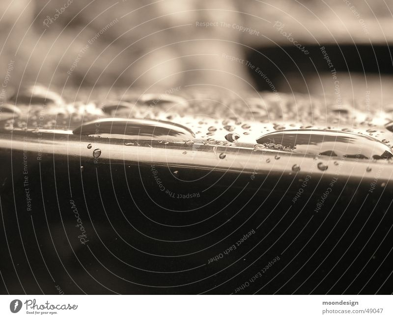 Sommerregen Wassertropfen Regen Kappeln Makroaufnahme Stuhllehne Nahaufnahme