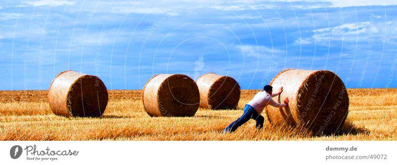 harte Arbeit I Arbeit & Erwerbstätigkeit Mann Hose Weste schieben Wiese Feld Sommer dommy thomas Haare & Frisuren Rolle Strohballen Sonne blau ansträngend