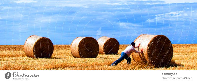 harte Arbeit I Mann Sonne blau Sommer Arbeit & Erwerbstätigkeit Wiese Haare & Frisuren Feld Stroh Hose Rolle Weste schieben Strohballen