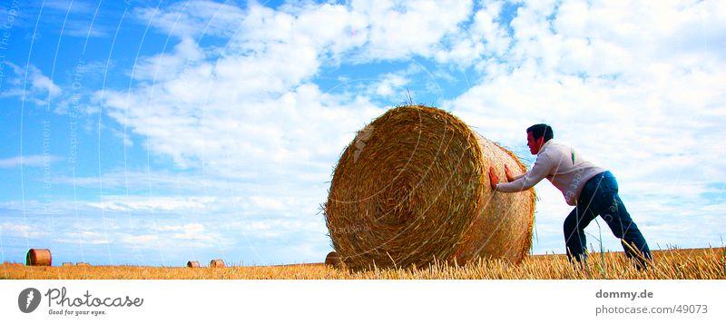 harte Arbeit II Arbeit & Erwerbstätigkeit Mann Hose Weste schieben Wiese Feld Sommer dommy thomas Haare & Frisuren Rolle Strohballen Sonne blau ansträngend