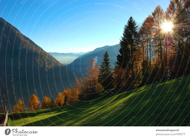 Ahornach im Herbst Farbe Herbst