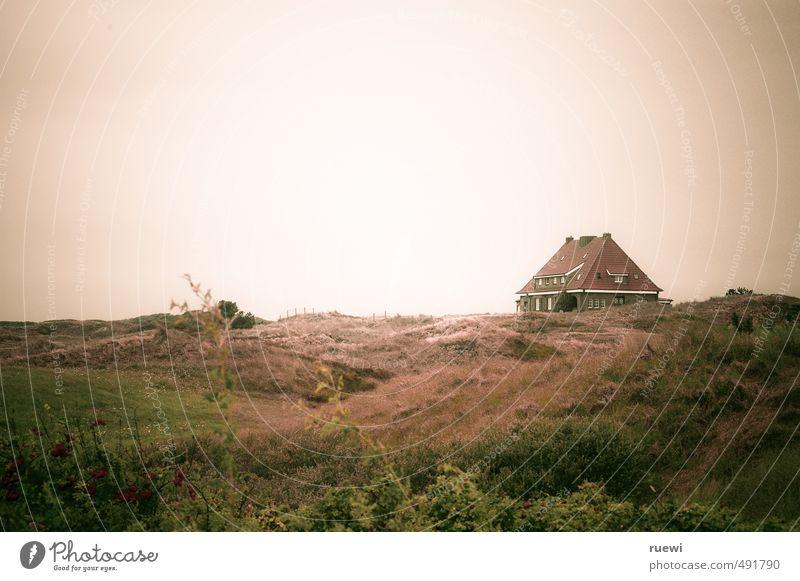 Und am Ende der Düne steht ein Haus am Meer Himmel Natur Ferien & Urlaub & Reisen grün Pflanze Sommer Landschaft Haus Ferne Gras Frühling Küste Architektur braun Wetter Wohnung