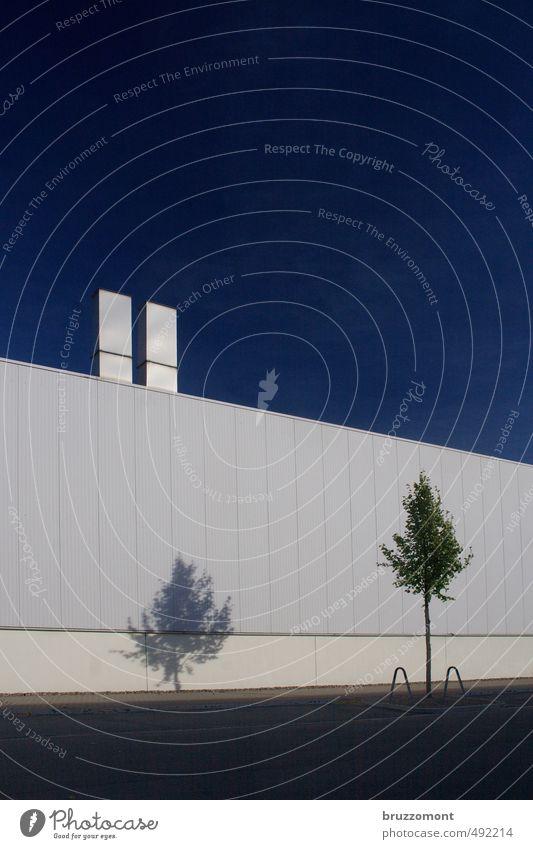 Flächenversiegelung weiß Baum Einsamkeit kalt Wand Straße Mauer Arbeit & Erwerbstätigkeit Business trist Perspektive planen Industrie Güterverkehr & Logistik