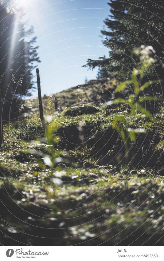 Da hoch will ich Natur Landschaft Freude Umwelt Gefühle Stimmung Luft Wetter Schönes Wetter Abenteuer