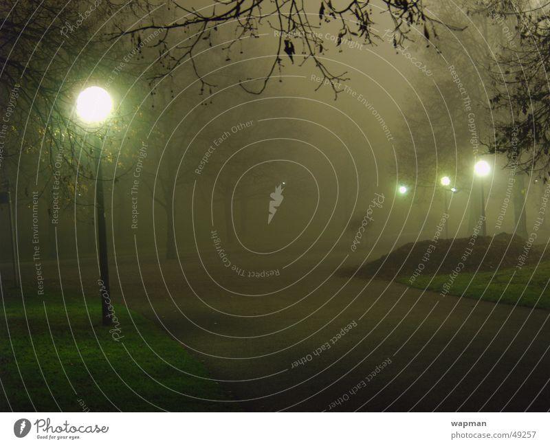Olympiapark im Nebel Nacht dunkel gruselig Straßenbeleuchtung Baum München Langzeitbelichtung