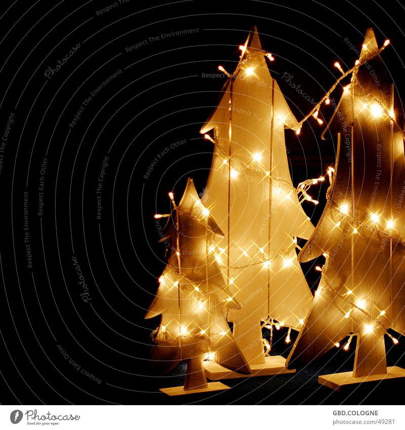 Die Erleuchtung Weihnachten & Advent Winter gelb Gefühle Holz Beleuchtung Stimmung Dekoration & Verzierung Stern (Symbol) Weihnachtsbaum Tanne gemütlich Licht Weihnachtsdekoration Lichterkette Lichtermeer