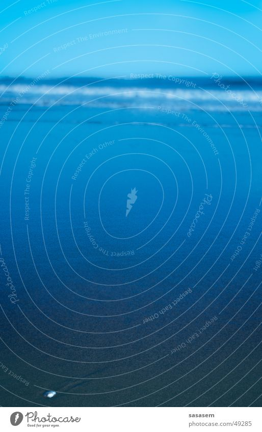 Meer in Holland blau Strand ruhig Einsamkeit Wellen Muschel