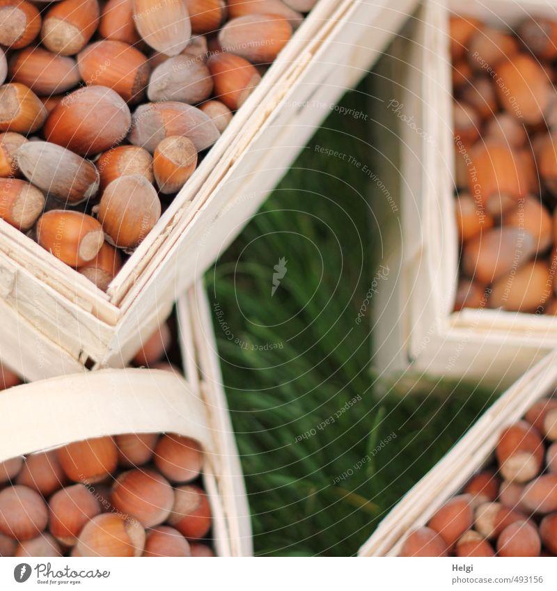 Nussecken... Lebensmittel Frucht Haselnuss Ernährung Bioprodukte Vegetarische Ernährung Korb Spankorb Holz eckig einfach frisch klein natürlich braun grün