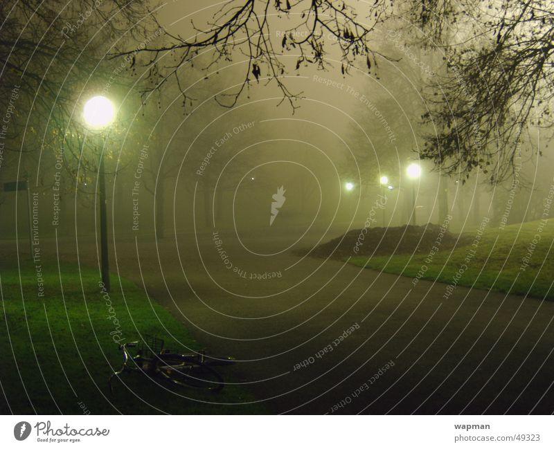 Olympiapark im Nebel - II Baum dunkel München gruselig Straßenbeleuchtung