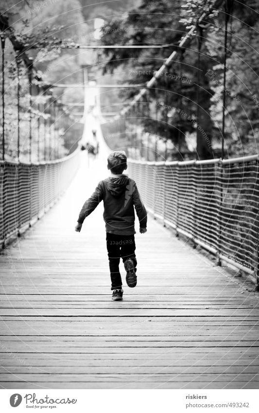ab über die hängebrücke :) Mensch Kind Freude Leben Junge natürlich Park maskulin Kraft Kindheit Zufriedenheit laufen frei Fröhlichkeit Beginn Coolness