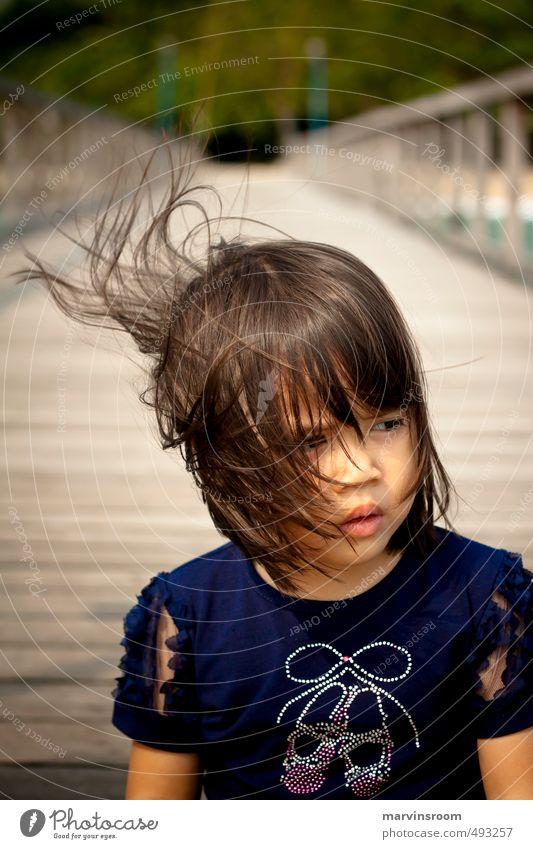 Blick Strand Mensch Kind Mädchen Haare & Frisuren 1 3-8 Jahre Kindheit Denken schön Warmherzigkeit Morgen Licht Wegsehen