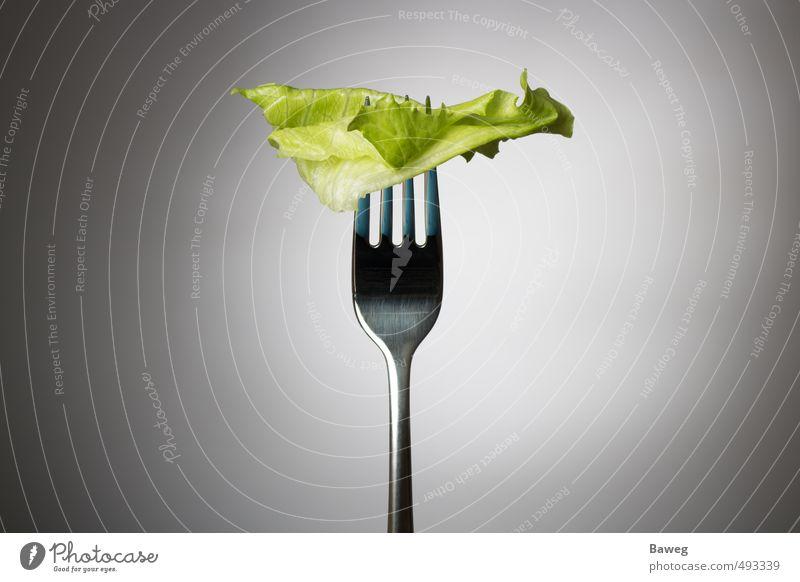 Ein Salatblatt auf der Gabel Lebensmittel Gemüse Salatbeilage Ernährung Diät Fasten Körper Gesundheit Gesundheitswesen Gesunde Ernährung sportlich Fitness