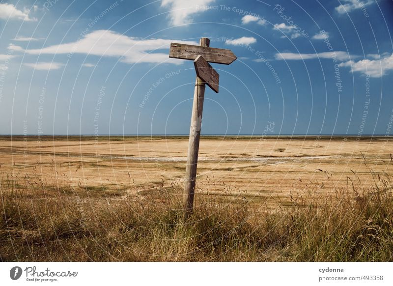 In Frankreich unterwegs Natur Ferien & Urlaub & Reisen Sommer Erholung Landschaft ruhig Ferne Umwelt Leben Wärme Wege & Pfade Freiheit Horizont Feld Tourismus