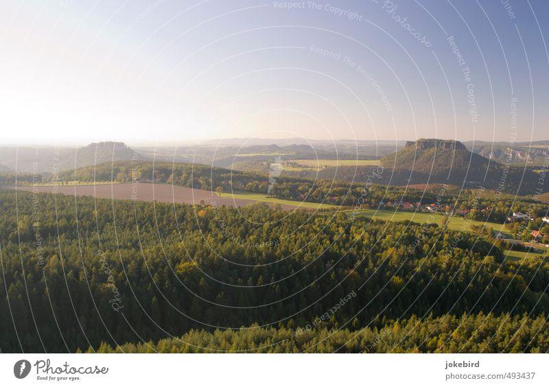 Abendlicht Himmel Wolkenloser Himmel Herbst Baum Feld Wald Berge u. Gebirge Elbsandsteingebirge Sächsische Schweiz Tafelberg Lilienstein Königsstein Mischwald