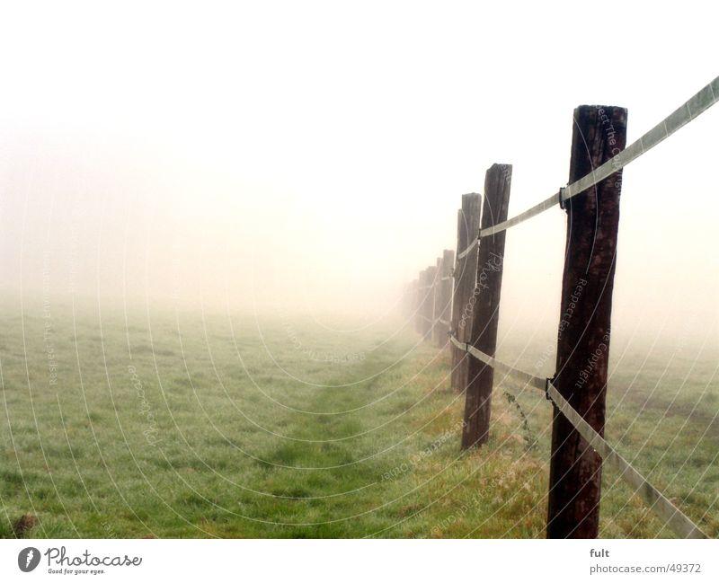 zaun ohne ende Zaun Holz Pfosten Wiese Gras Nebel Morgen Eisenbahnschwelle nebeneinander Seil Reihe