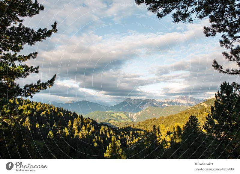 Abend Umwelt Natur Erde Luft Wasser Himmel Wolken Sommer Schönes Wetter Baum Ast Wald Hügel Felsen Alpen Berge u. Gebirge Gipfel Dolomiten hängen gigantisch