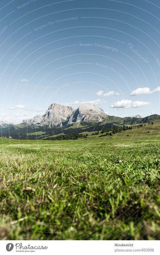 Saftig Himmel Wolken Sommer Pflanze Gras Blatt Wiese Wald Hügel Felsen Alpen Berge u. Gebirge Gipfel stehen dehydrieren Wachstum eckig fest gigantisch groß hoch