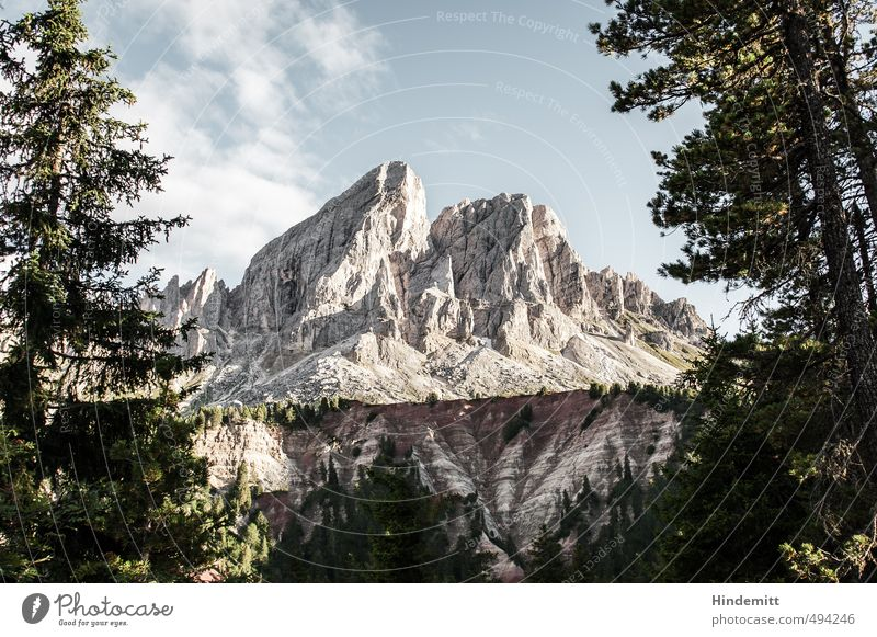 Peitlerkofel [landscape] Himmel Ferien & Urlaub & Reisen blau grün Sommer Baum Wolken Wald Berge u. Gebirge grau Stein außergewöhnlich Felsen Luft Erde groß