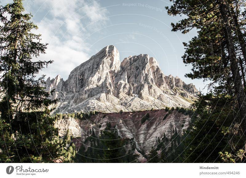 Peitlerkofel [landscape] Urelemente Erde Luft Himmel Wolken Sommer Schönes Wetter Baum Wald Hügel Felsen Alpen Berge u. Gebirge Gipfel Dolomiten Stein stehen