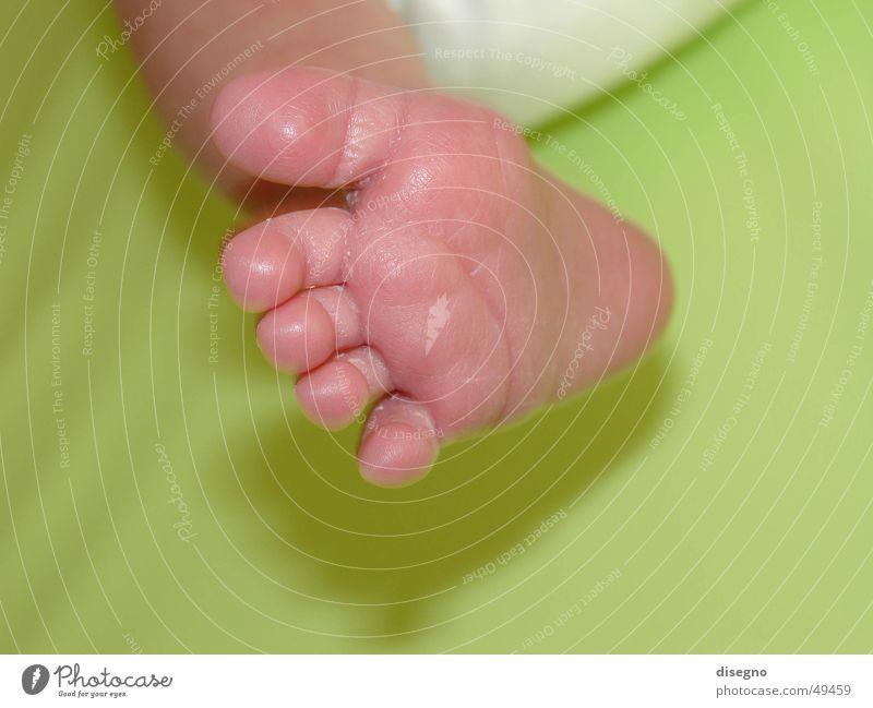 Fuss Kind Fuß Beine Baby gehen Kleinkind Zehen Geburt Körperteile Windeln