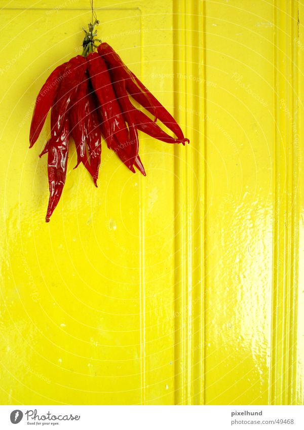 getrocknete schärfe Peperoni rot trocken trocknen gelb hängen Peperoni Arrostiti Peperoni Imbottiti Scharfer Geschmack peper hot red door Tür hang on dry