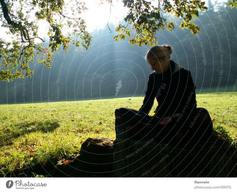 hanna Frau Baum Sonne grün Wald Wiese Herbst hell Beleuchtung Idylle